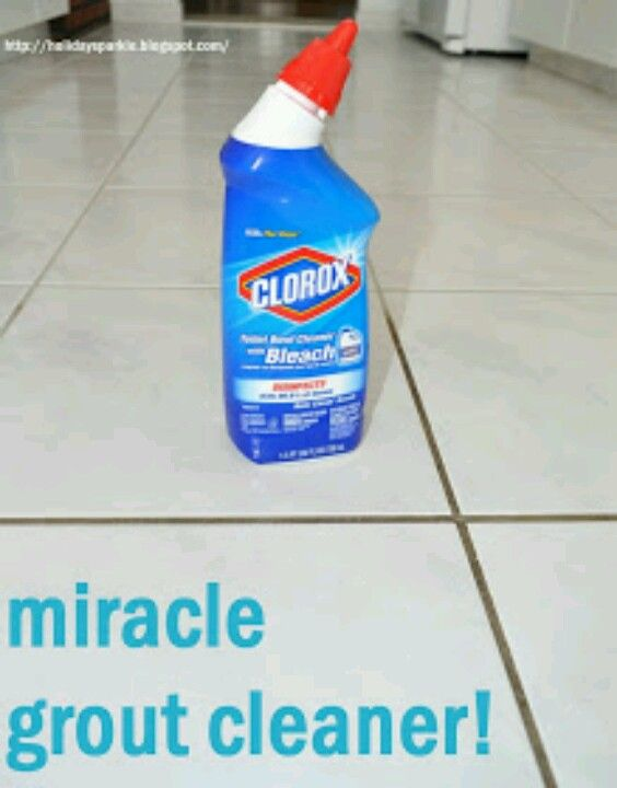 Don T Use The One With Bleach Clorox Toilet Bowl Cleaner