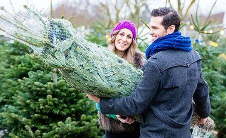 die besten 25 k nstlicher weihnachtsbaum wie echt ideen auf pinterest weihnachtsideen zum. Black Bedroom Furniture Sets. Home Design Ideas