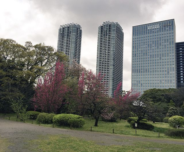 Los magníficos jardines japoneses de Hamarikyu Pinterest
