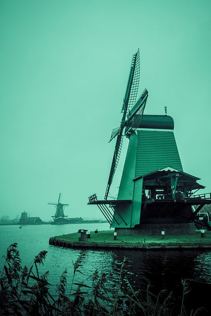 The best of Holland. Pics  by Carlos Riveros