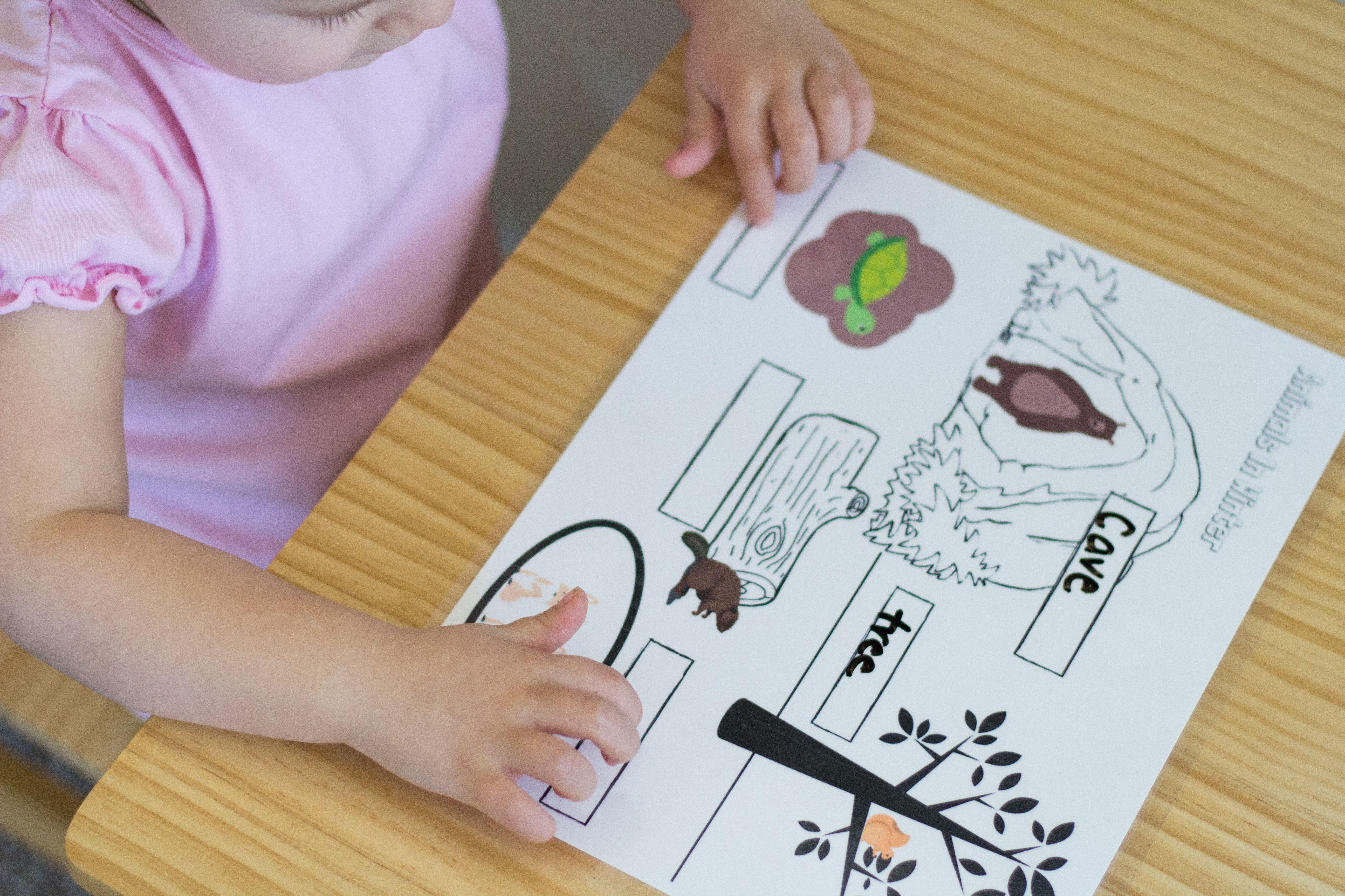 Montessori Week 3 Hibernation Printables And Activities