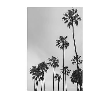 Los Angeles Palm Trees Jane Wilder 28X42 Wood Gallery Espresso No ...