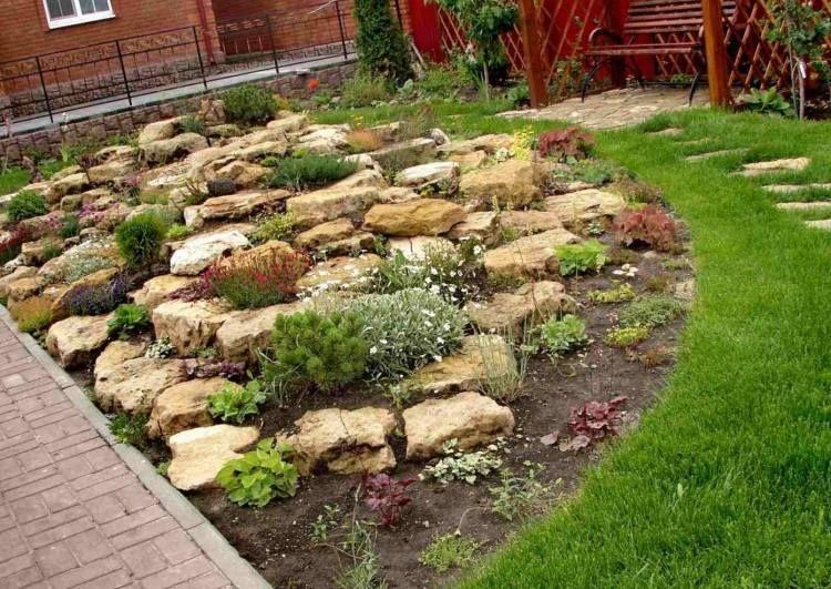 Flache Steine In Einer Gelb Braunen Farbe Steingarten Gestalten Steingarten Steingarten Pflanzen