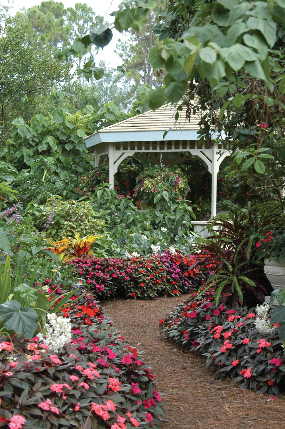 A gazebo peeks out from behind the flowers in this Palm beach county ...