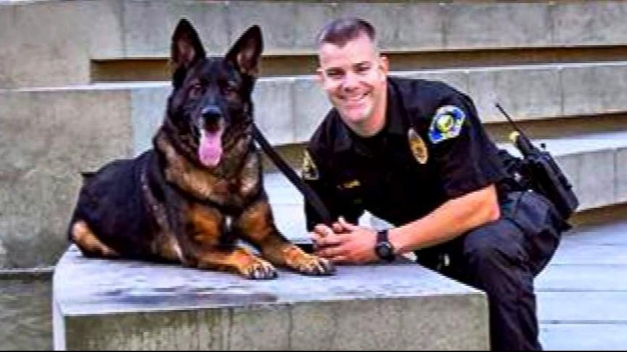 Police Dog Shot in Line of Duty Reunited with Cop Police