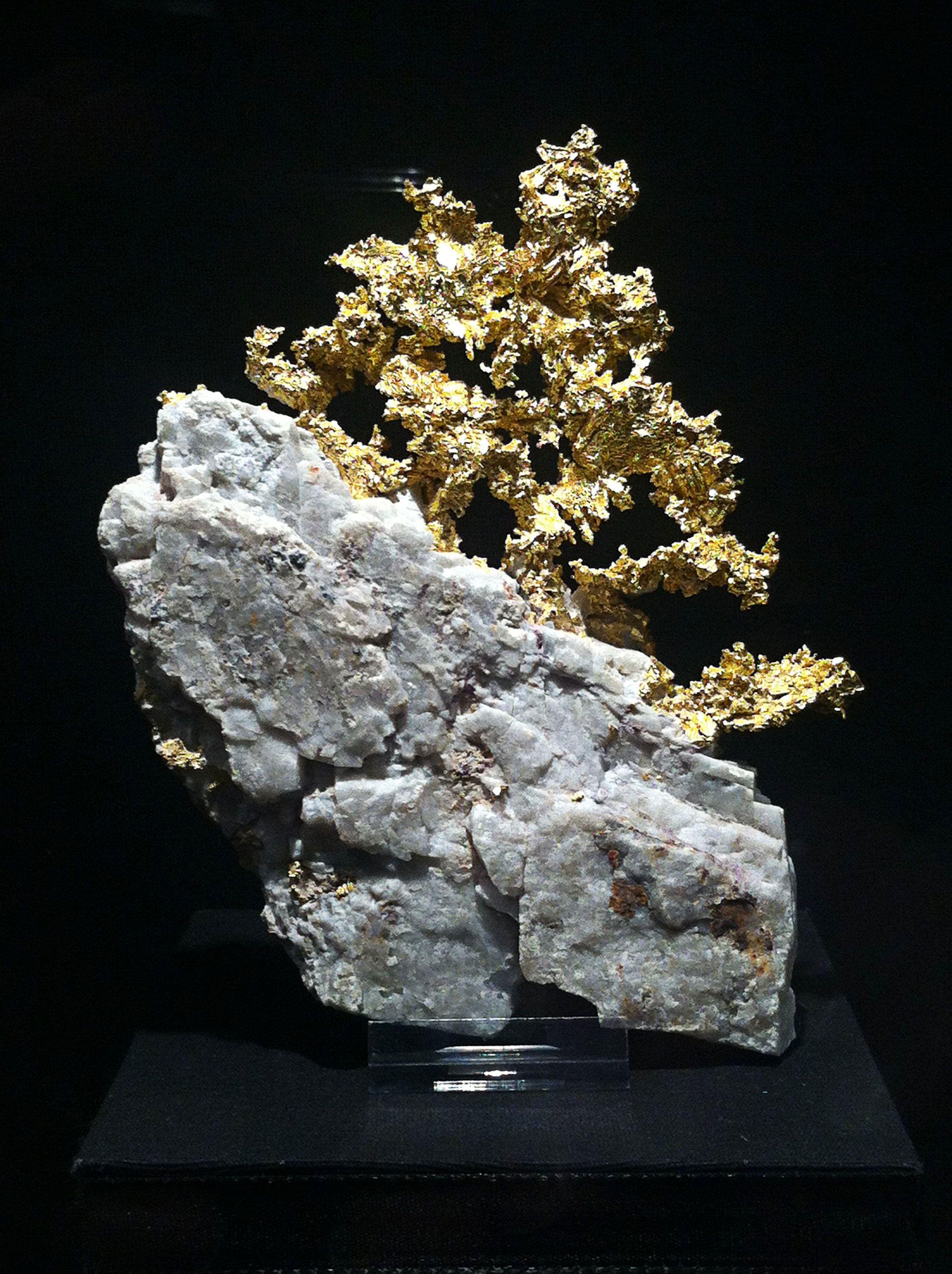 Bäumchen aus Gold