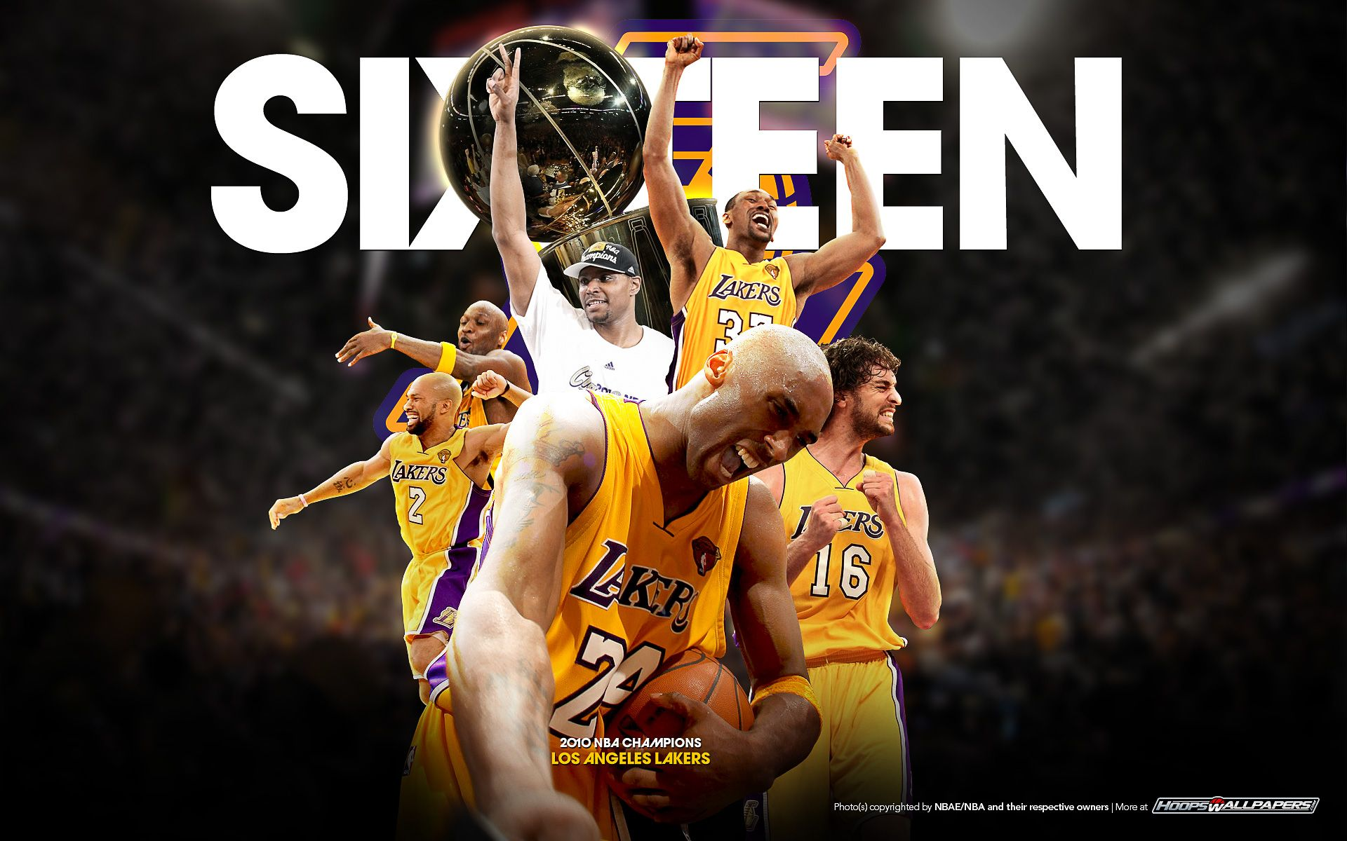 16 Championships One Of The Greatest Franchises In All Of Sports Los Angeles Lakers Lakers Lakers Team