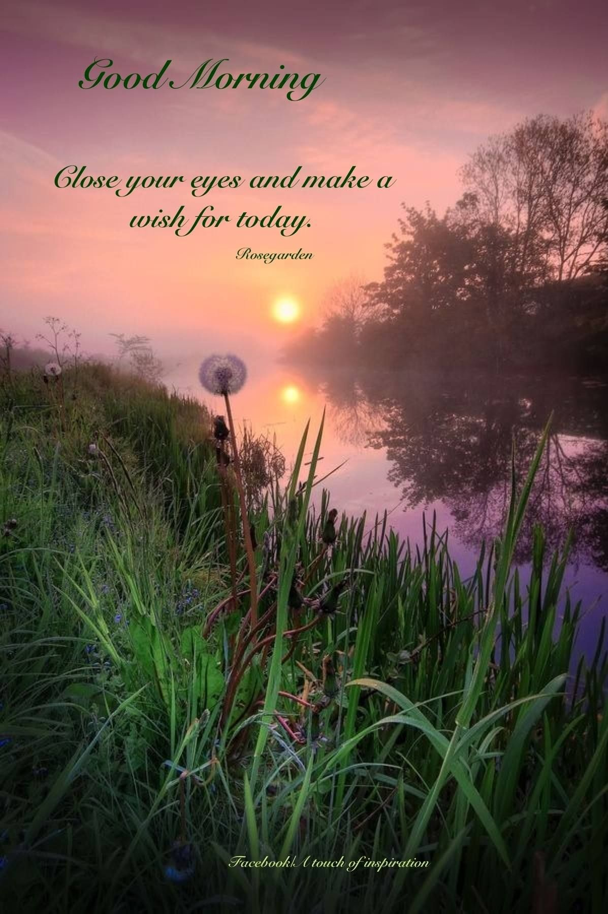 Good Morning Good Morning Sunrise Nature Sunset