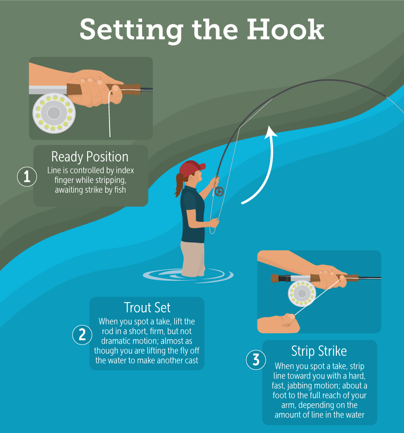 How to Land More Fish With a Fly Rod Tips and Techniques