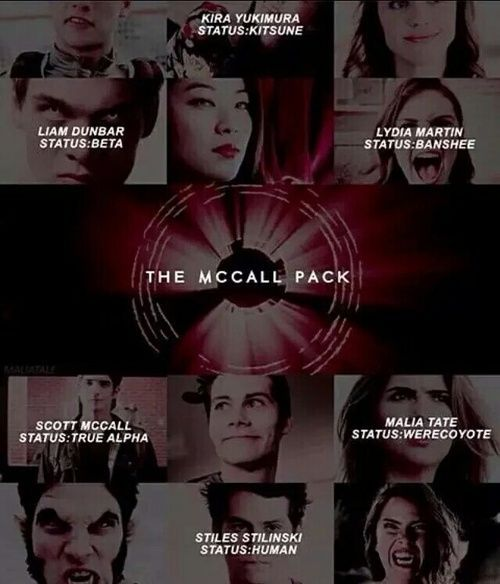 I always thought it was fricking neat they're all pretty much different species but their love keeps them together. #friendship #TeenWolf
