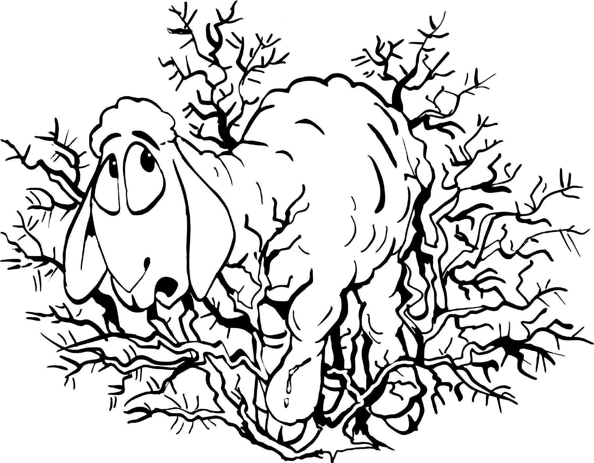 Schaf in Dornen | Ausmalbilder Tiere | Pinterest | Ausmalbilder ...