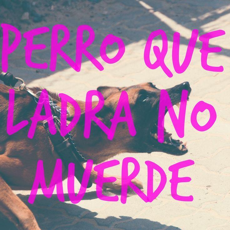 Generate Cool Text Words Quotes On Your Photos Imagenes De Memes Graciosos Perros Ladrando Dichos Y Refranes