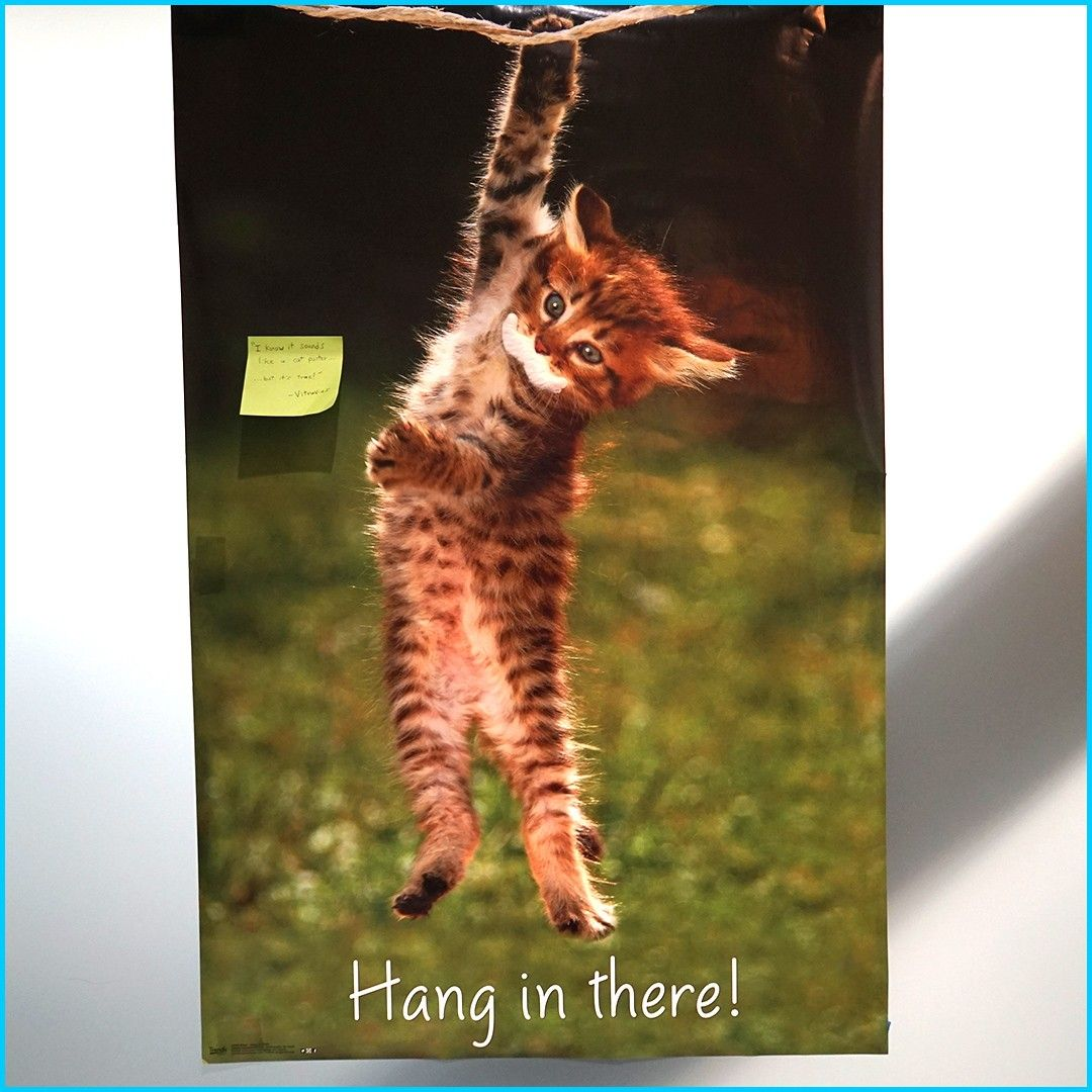 Not Only Is This Incredibly Relevant We Believe This Poster Hanging Ha In The Kitchen At Devmountain Le In 2020 Hang In There Cat Cat Posters Trends International