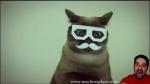 Dubstep Cat (Video)