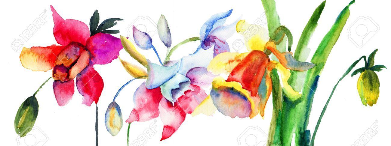 Narcissus watercolour Google Search Watercolor tattoo