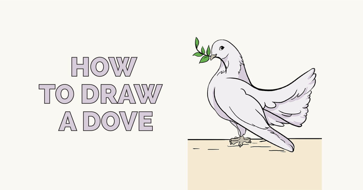 How To Draw A Dove In A Few Easy Steps In 2018 Dove Drawings And