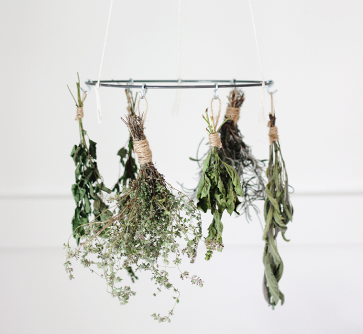 Browse Kitchens Archives On Remodelista Herb Drying Racks Drying Herbs Diy Hanging Shelves