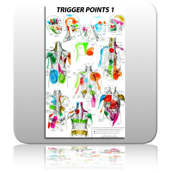 Free Printable Reflexology Charts Trigger Point Chart Mixed Message Media Use Your Freedom