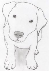 Photo of Dog Drawings Pictures – #dogs #Drawings #Image