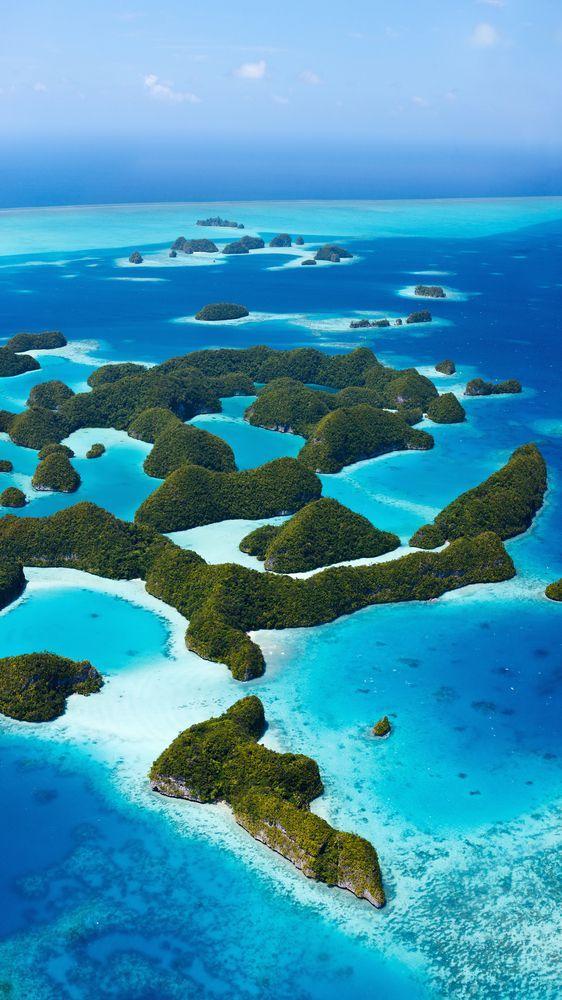 Palau, A Divers Wonderland--PADI Blog