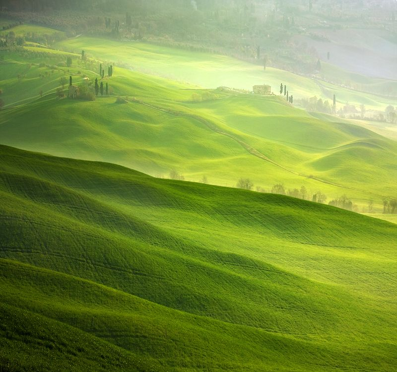 Hills of Pienza