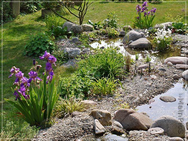 Steingarten taglilien google suche garden ideas for Steingarten teich