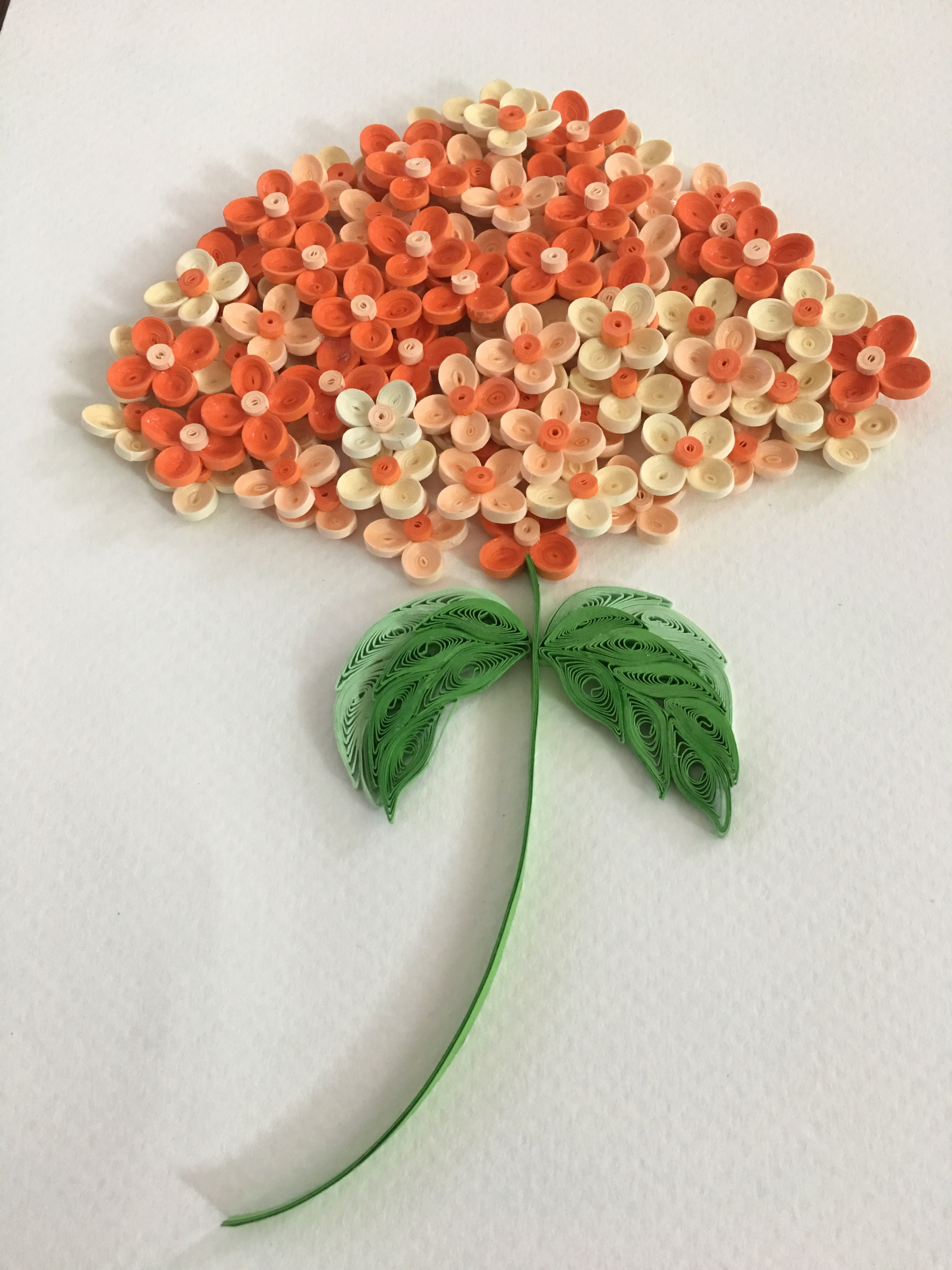 Pin By Quilling Flowers On My Quilling Pinterest Quilling Paper