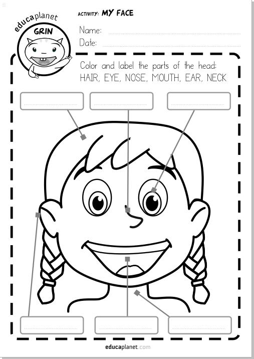Partes de la cara - ficha GRATIS para imprimir español e inglés ...