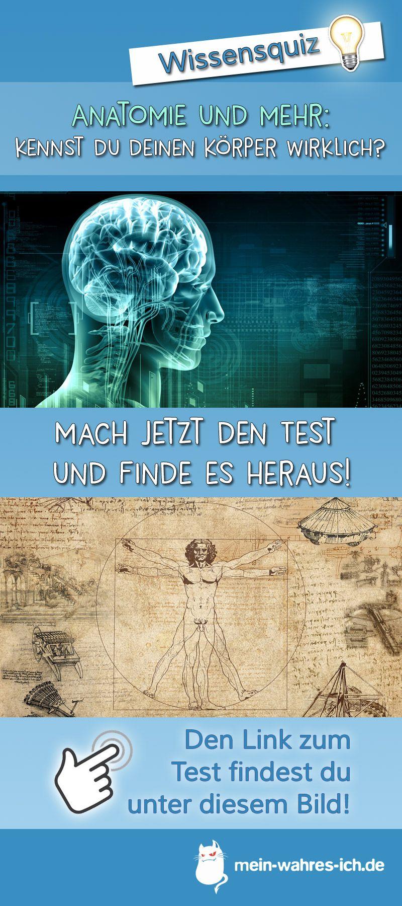 Groß Grundlagen Der Anatomie Und Physiologie Martini Nath ...