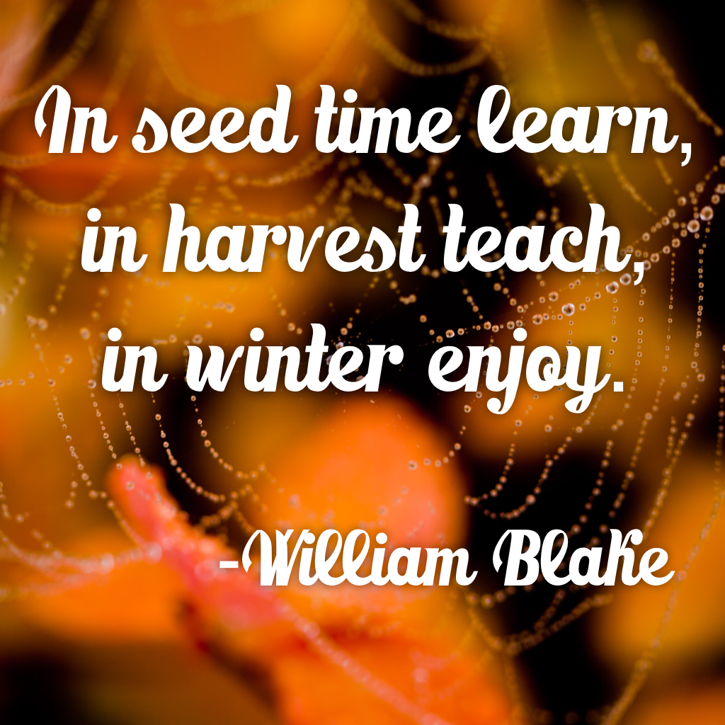 #nature #garden #outdoors #seasons #fall #winter #quotes #inspirational