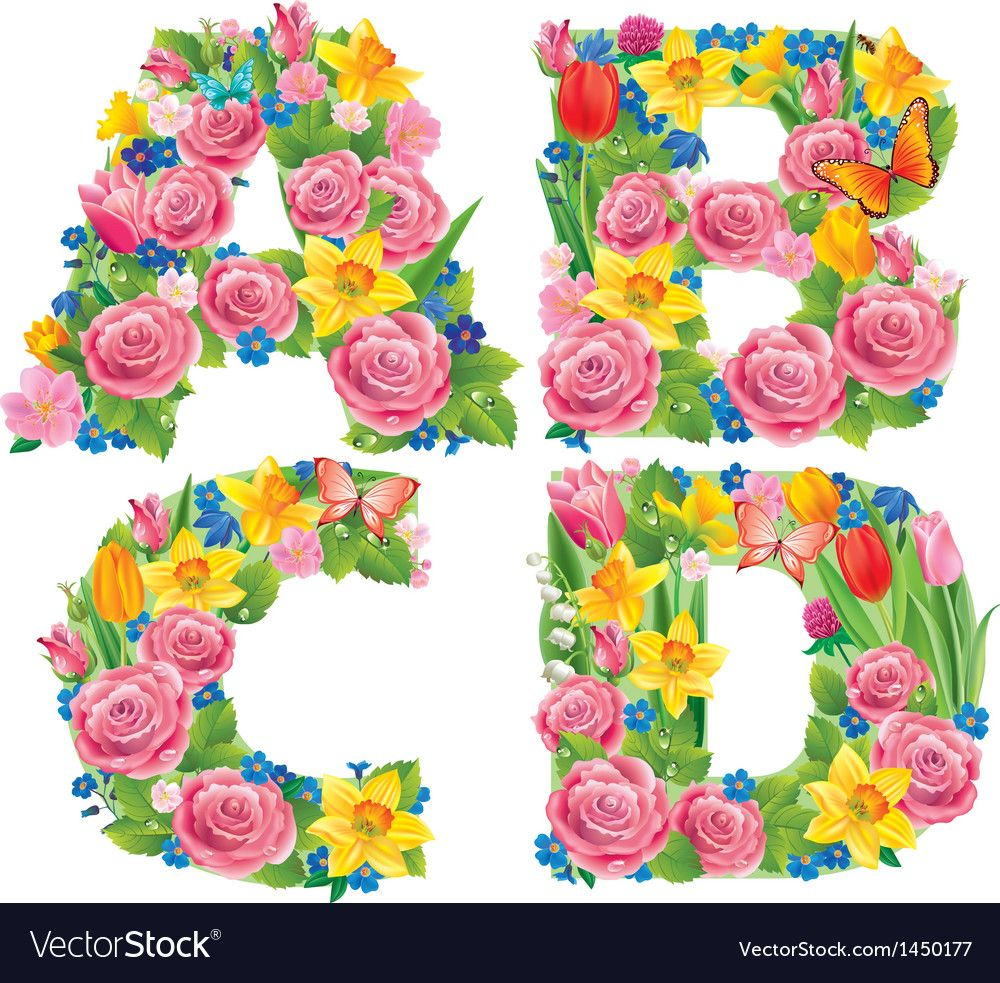 Download Alphabet of flowers ABCD vector image on VectorStock ...