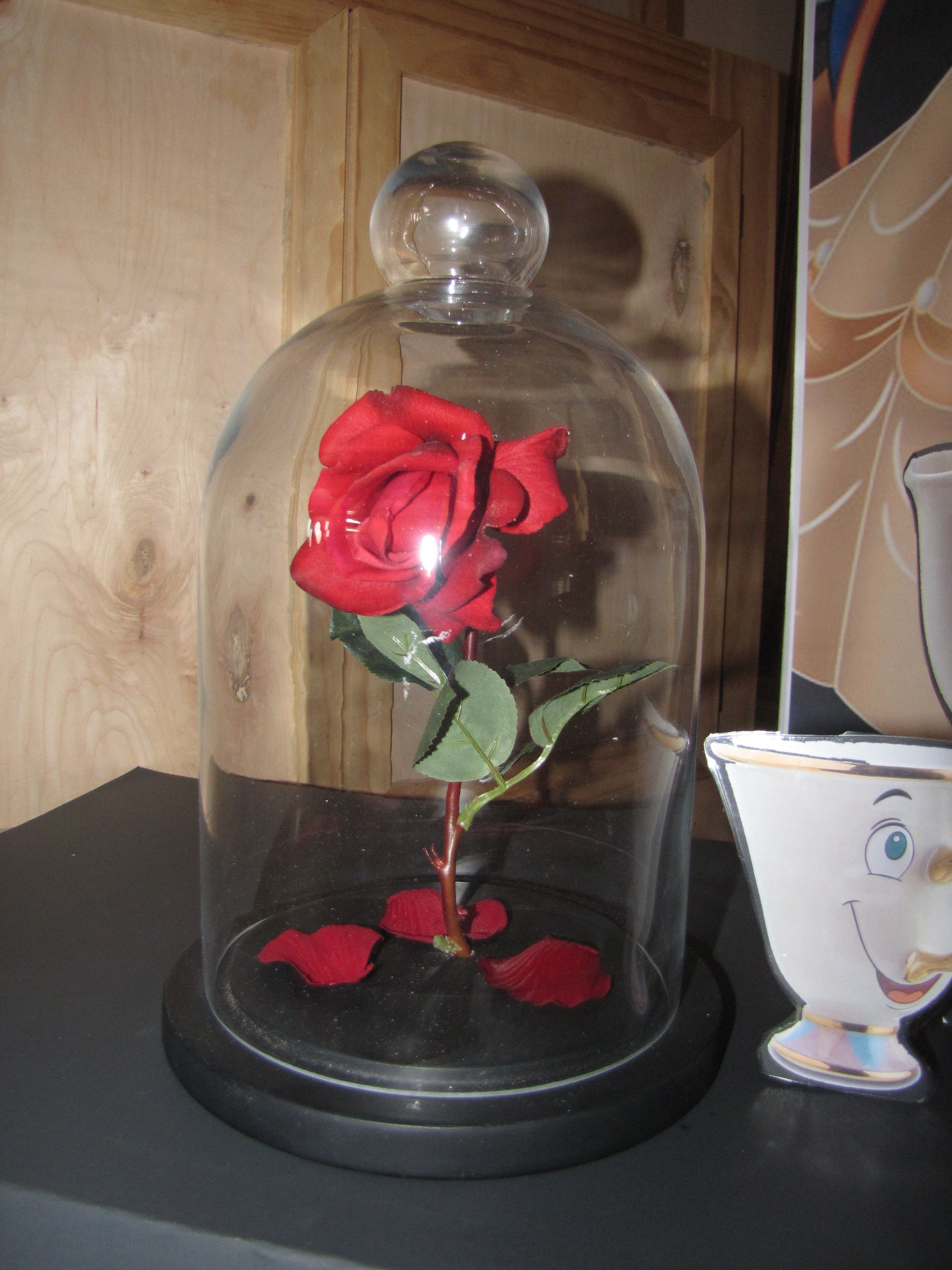 70587d88d5 Enchanted Rose: glass dome, realistic rose, and rose petals from Hobby  Lobby. Drilled an angled hole in the base for the rose stem.