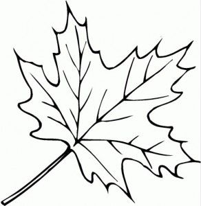 Leaves coloring page | Leaves