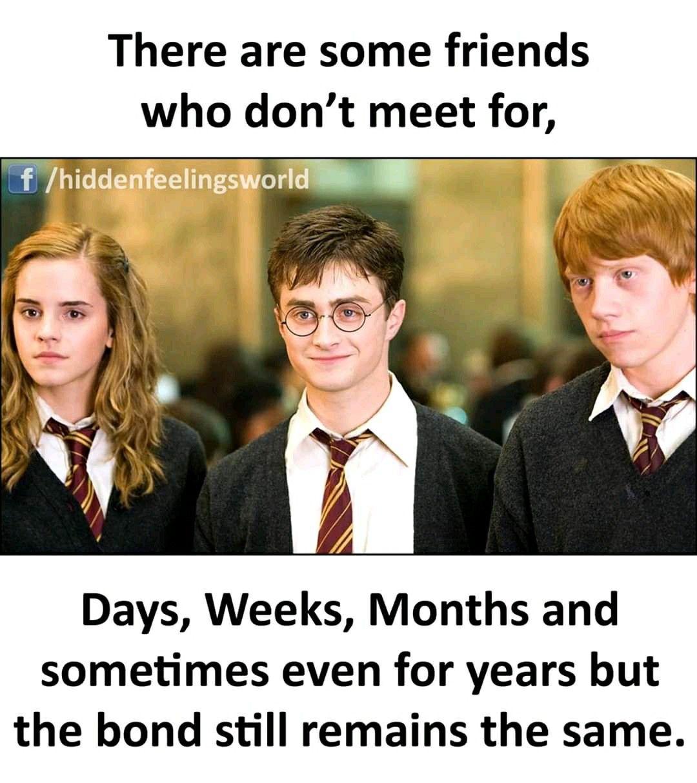 Pin By Shubhi On Hidden Felling In 2020 Harry Potter Memes Harry Potter Puns Harry Potter Jokes