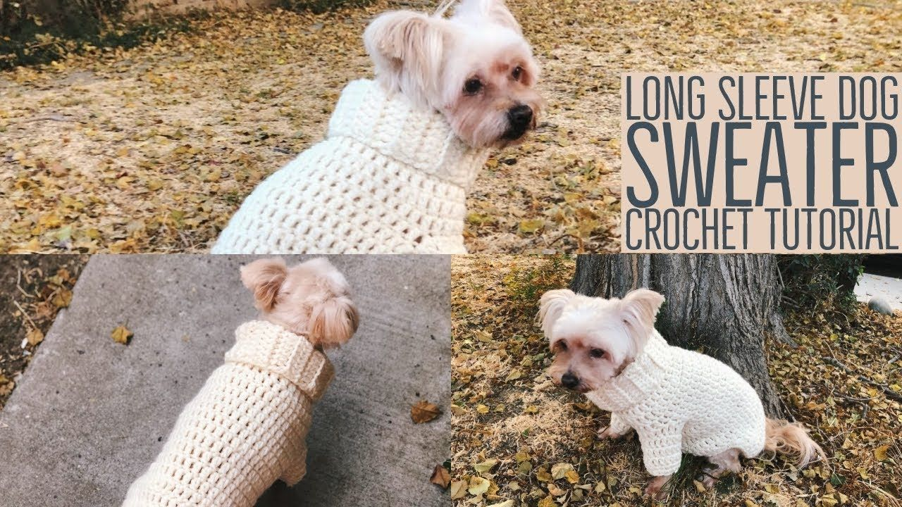 Warm Chunky Long Sleeve Dog Sweater Crochet Tutorial | Great for Cats TOO♡ - YouTube #dogcrochetedsweaters Warm Chunky Long Sleeve Dog Sweater Crochet Tutorial | Great for Cats TOO♡ - YouTube #dogcrochetedsweaters