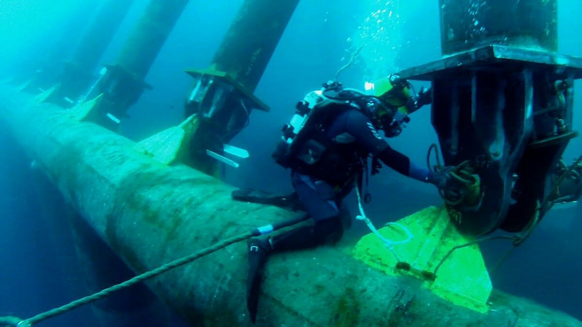 Pin by Roman Motornyy on cuba Diver Life Underwater