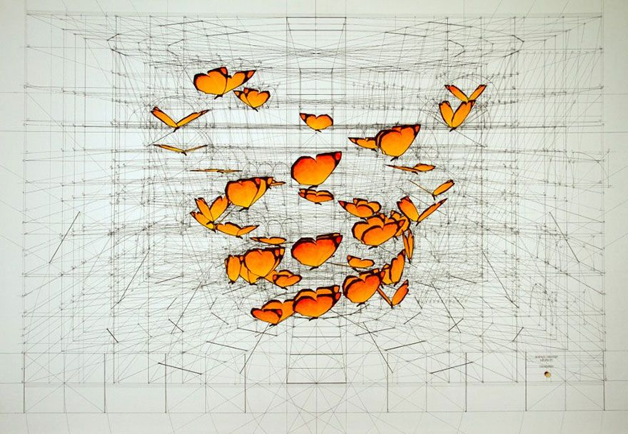 Hand-Drawn Coloring Book Reveals Mathematical Beauty Of Nature\'s ...