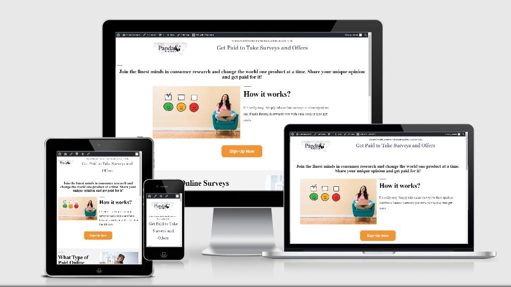 I will make a Responsive Custom Landing Page or WordPress