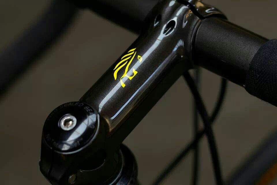 Jaegher equipped with Campagnolo