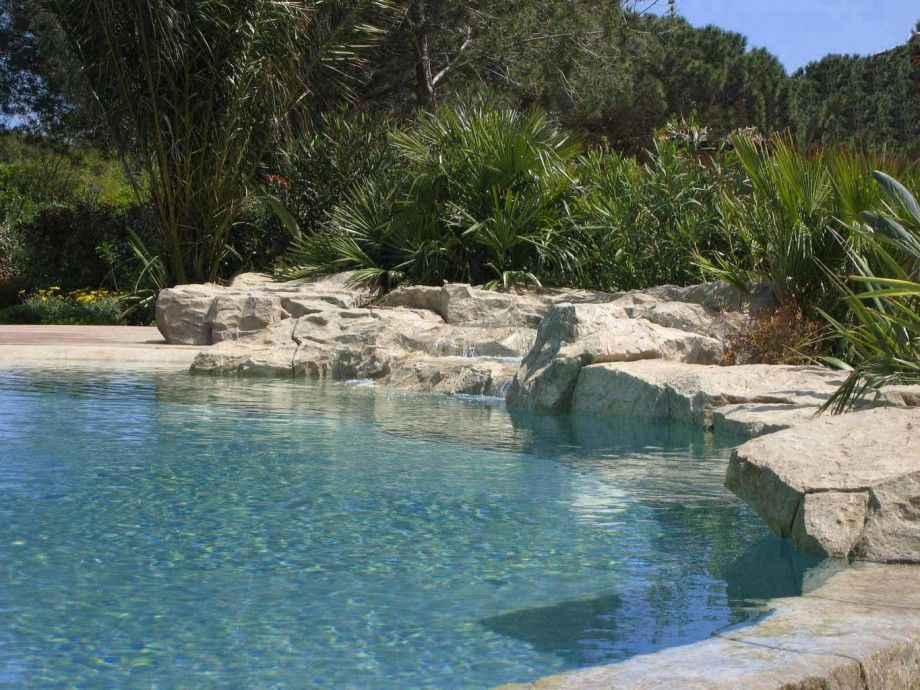 Back To Nature With Natural Swimming Pools: Waterworld Natural Swimming  Pool Designs LaurieFlower 004