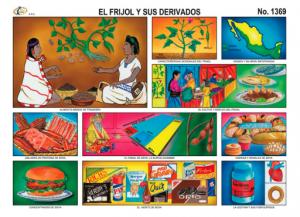 1369 El frijol y sus derivados  Educativo  Pinterest