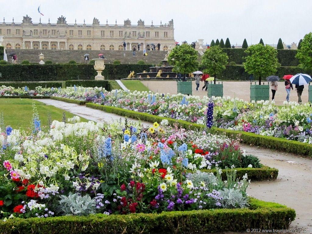 Gardens Of Versailles Flowers 3