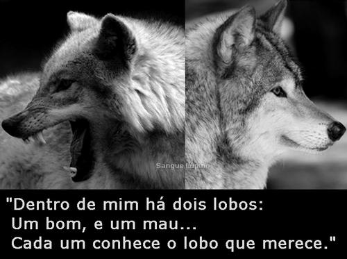 Face Foto De Poemas E Frases Pe Fábio De Melo 27062015 às 21