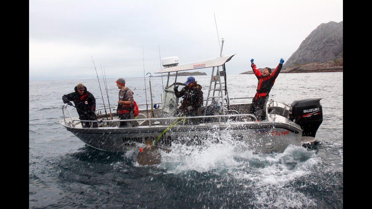 Huge halibut coalfish topwater action a lofoten for Juneau fishing charters
