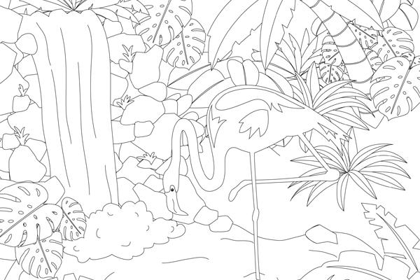 ausmalbild flamingo  ausmalbilder