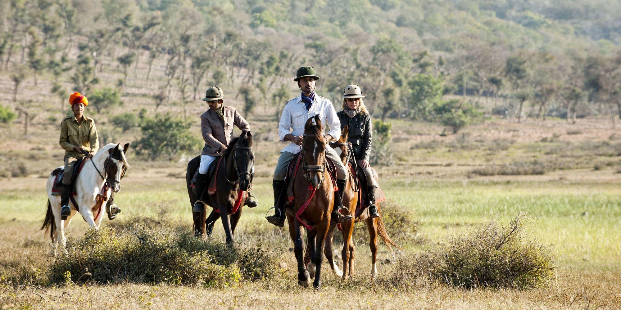 Bijaipur Tours Horses Small Group Tours Safari