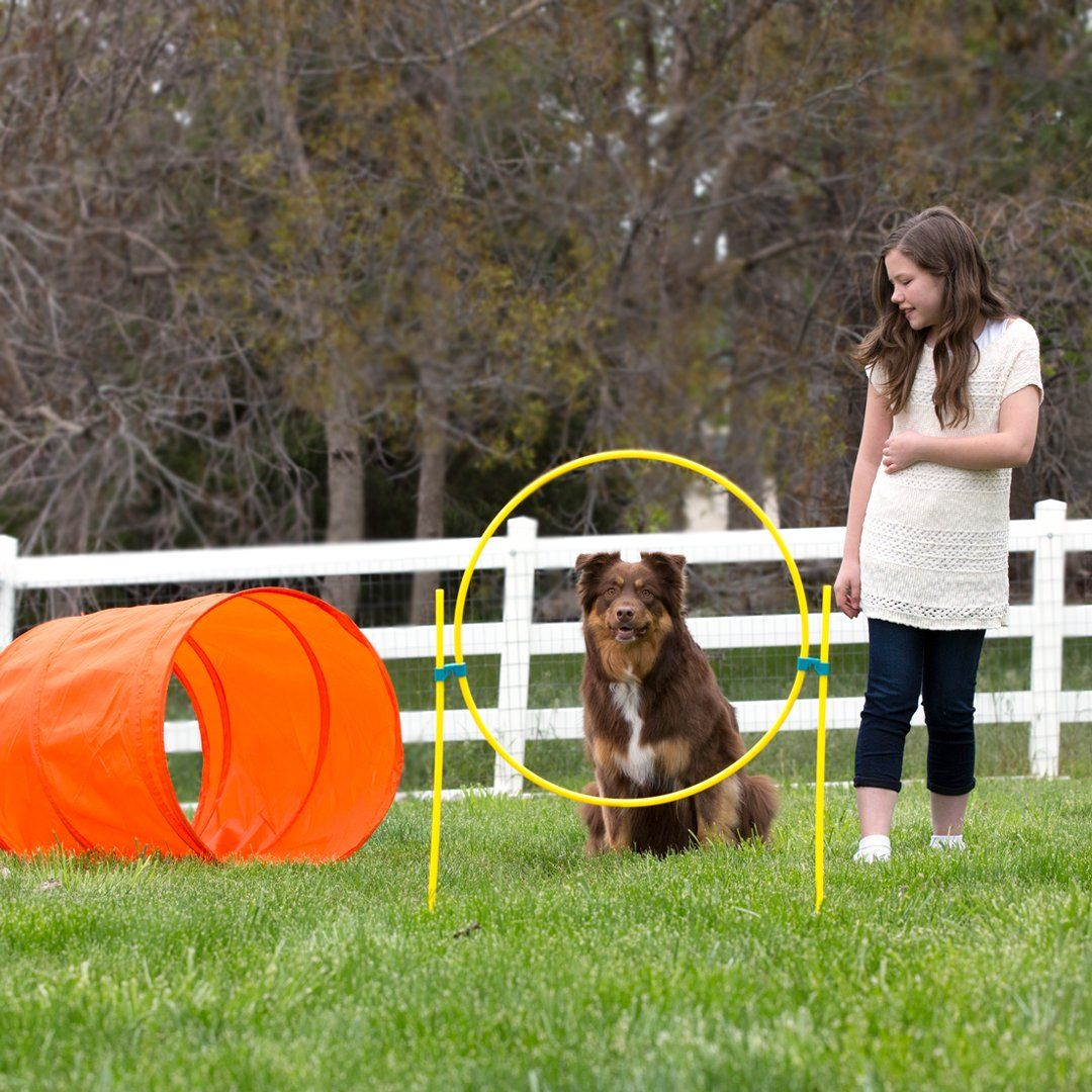 Outward Hound ZipZoom Outdoor Dog Agility Training For