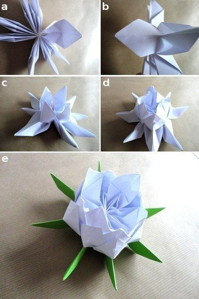 Incredible origami lotus flower instructions video tutorial incredible origami lotus flower instructions video tutorial mightylinksfo Gallery