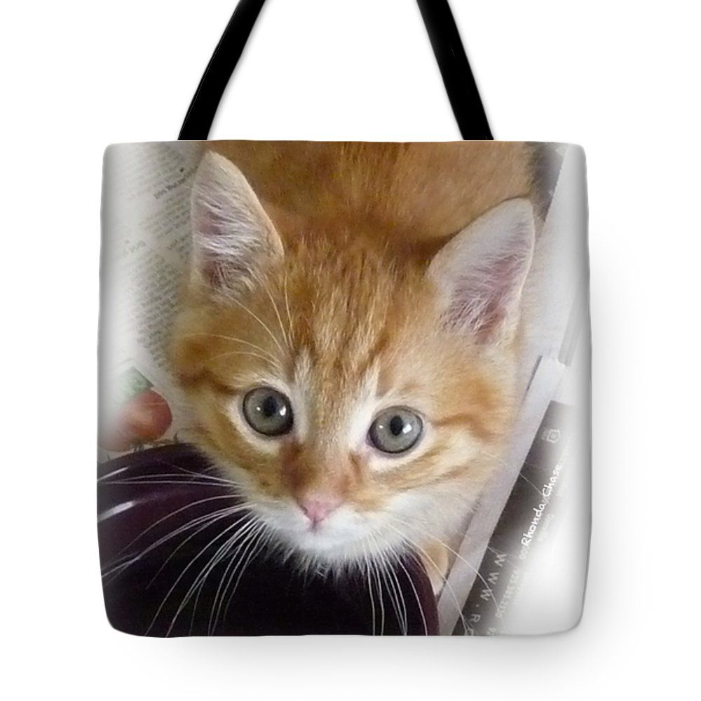 I Can Has More Water Please Tote Bag For Sale By Rhonda Chase Pretty Cats Kittens Cutest Cats