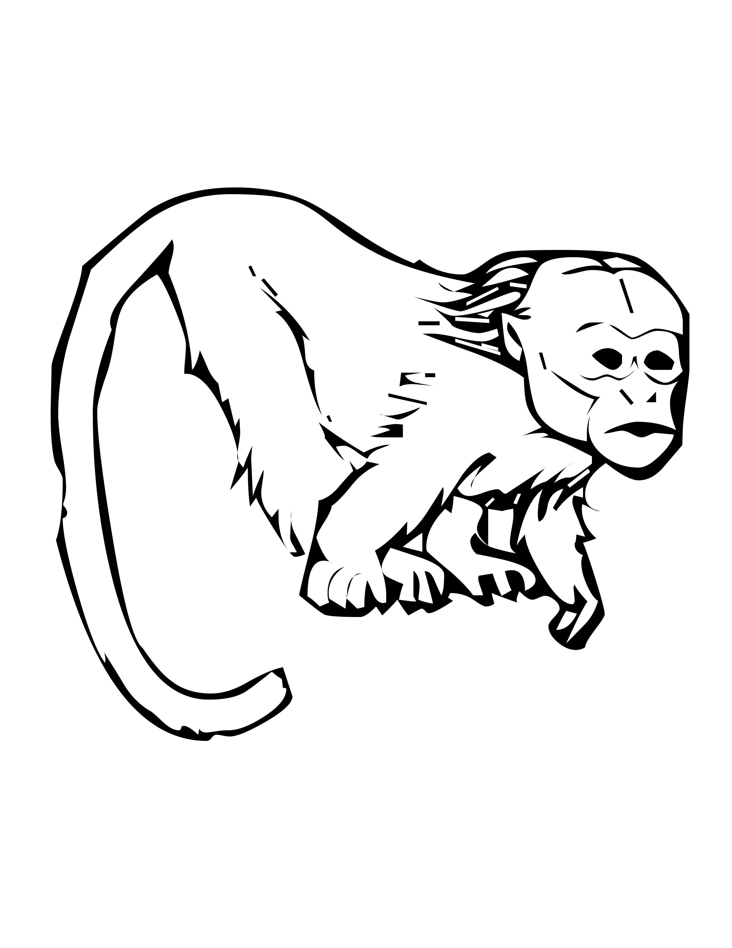 emperor tamarin coloring page tamarind monkey colouring